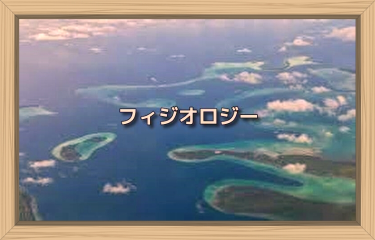 f:id:shiho196123:20190917183304j:plain