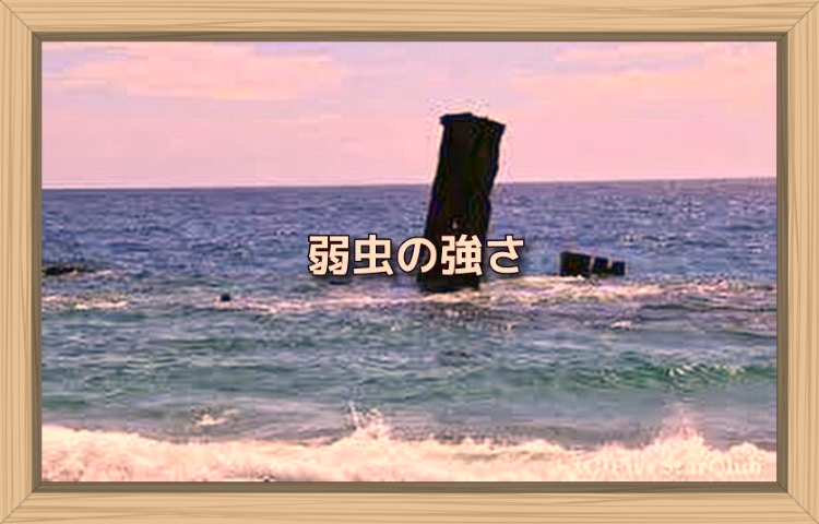 f:id:shiho196123:20190918060409j:plain