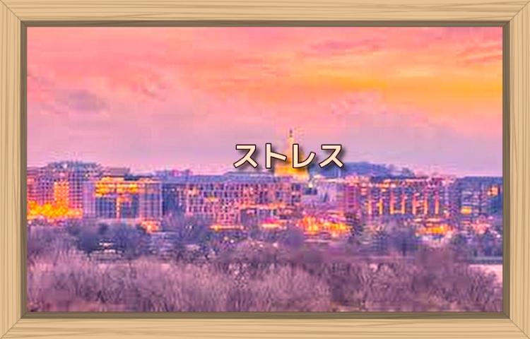 f:id:shiho196123:20190921035850j:plain