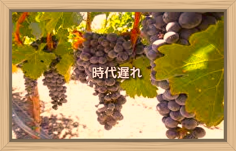 f:id:shiho196123:20190922175732j:plain