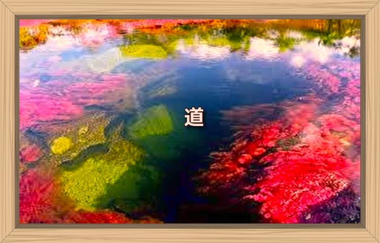 f:id:shiho196123:20190922180900j:plain