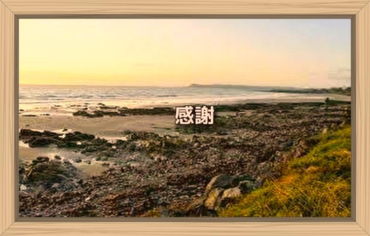 f:id:shiho196123:20190923203824j:plain