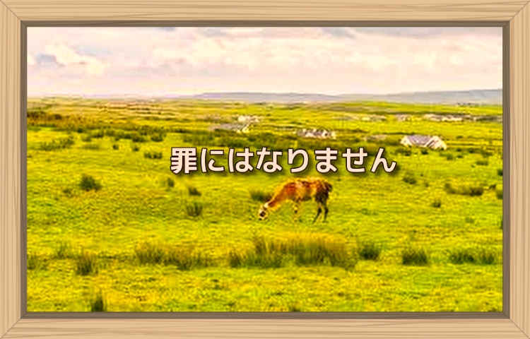 f:id:shiho196123:20190923204149j:plain