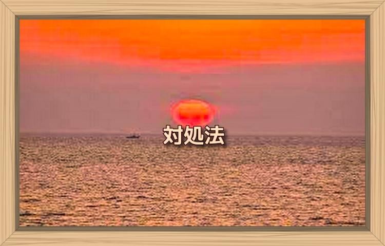 f:id:shiho196123:20190924233507j:plain