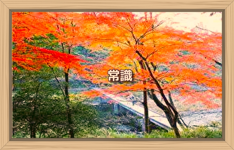 f:id:shiho196123:20190926212507j:plain