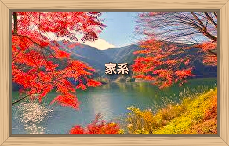 f:id:shiho196123:20190926212547j:plain