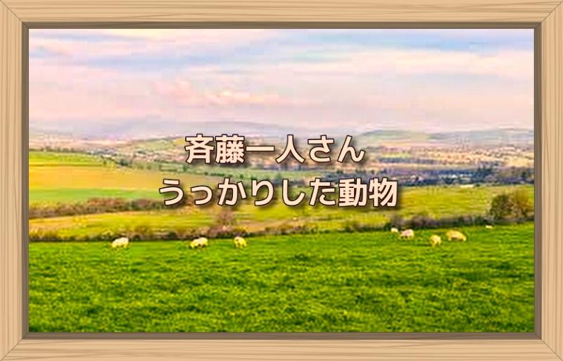 f:id:shiho196123:20190928212327j:plain