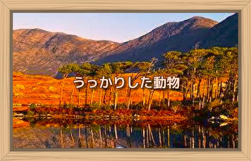 f:id:shiho196123:20190928213415j:plain