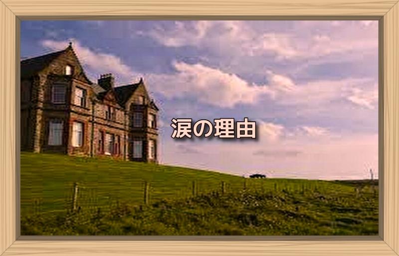 f:id:shiho196123:20190929031912j:plain