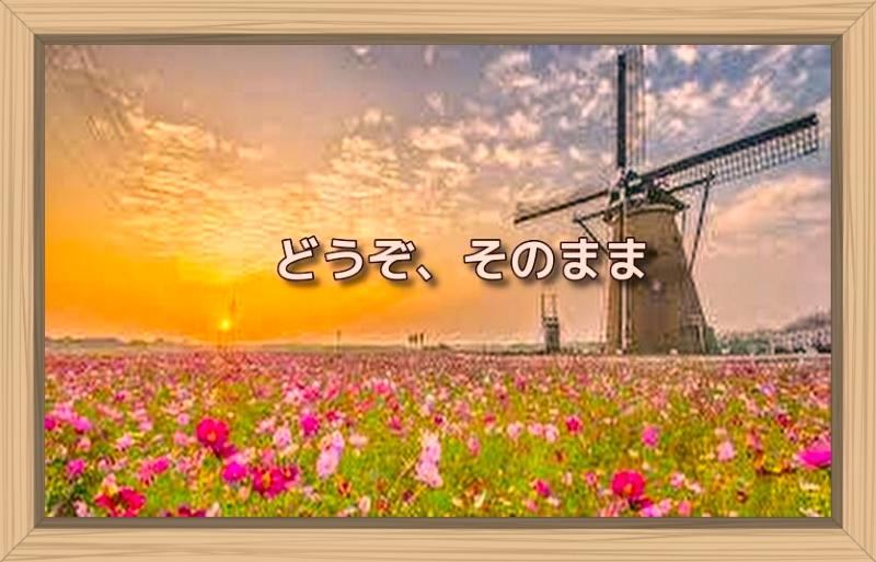 f:id:shiho196123:20191001063750j:plain