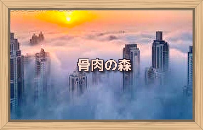 f:id:shiho196123:20191004181000j:plain