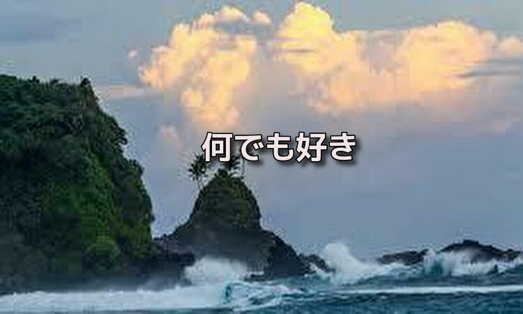 f:id:shiho196123:20191006221916j:plain