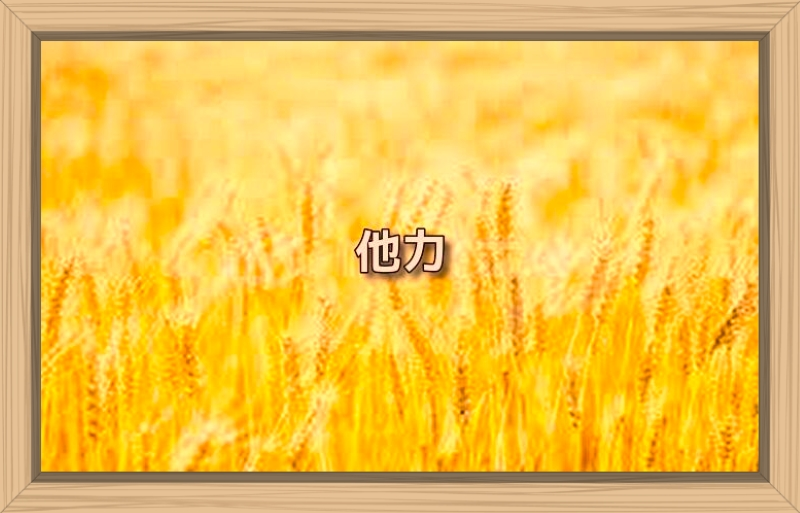 f:id:shiho196123:20191006222913j:plain