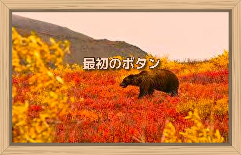 f:id:shiho196123:20191008180652j:plain