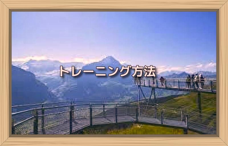 f:id:shiho196123:20191009032131j:plain