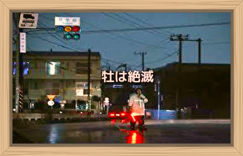 f:id:shiho196123:20191013082445j:plain