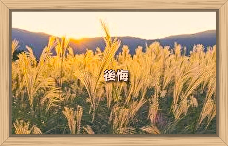 f:id:shiho196123:20191027085928j:plain