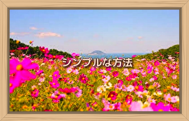 f:id:shiho196123:20191027090157j:plain