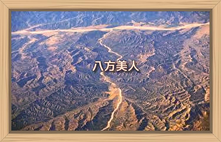 f:id:shiho196123:20191030093647j:plain