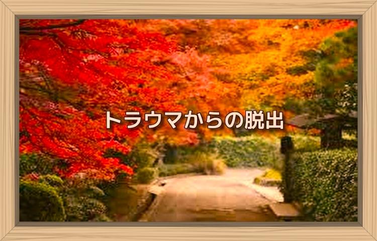 f:id:shiho196123:20191102110502j:plain