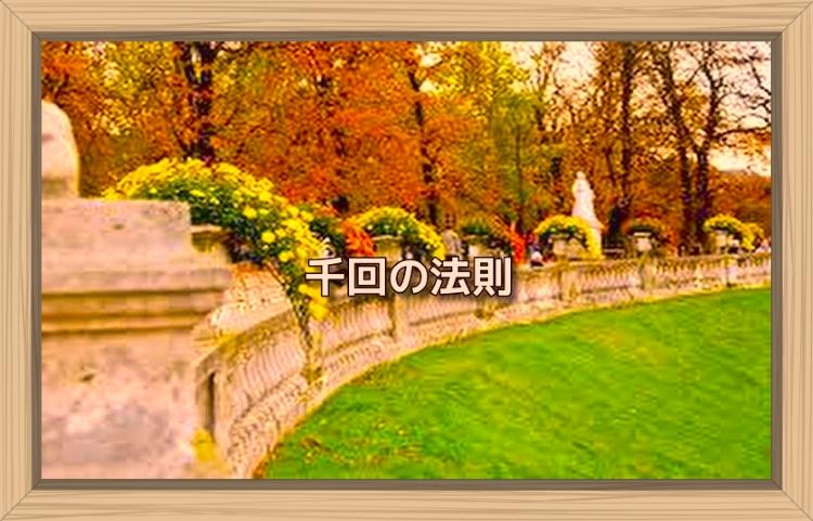 f:id:shiho196123:20191103132625j:plain
