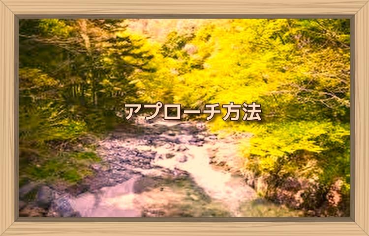 f:id:shiho196123:20191104114445j:plain