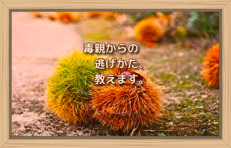 f:id:shiho196123:20191105103909j:plain