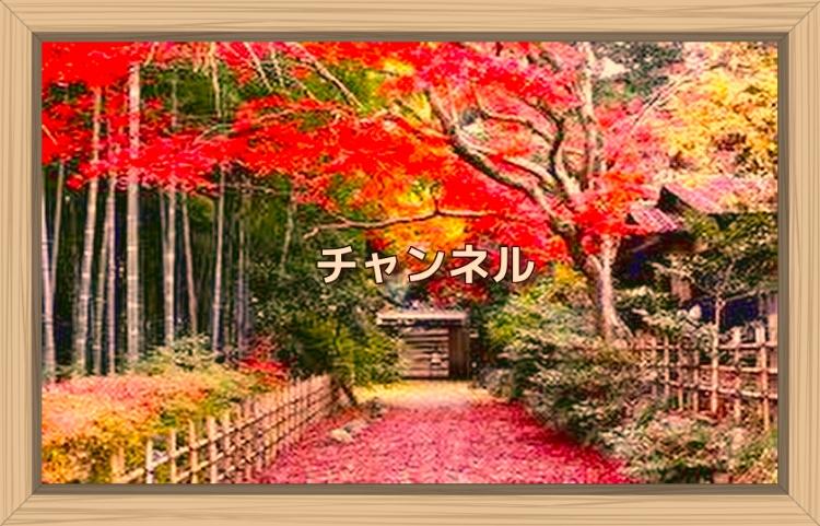 f:id:shiho196123:20191108151820j:plain