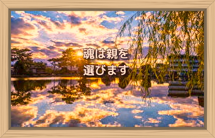 f:id:shiho196123:20191109132918j:plain