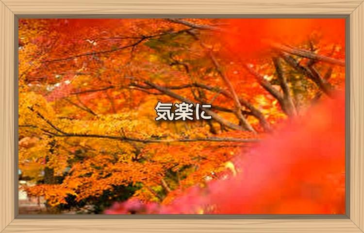 f:id:shiho196123:20191109140929j:plain