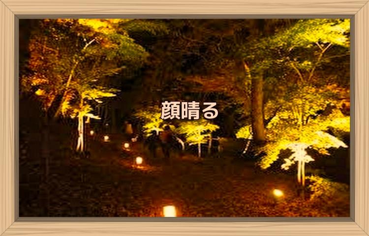 f:id:shiho196123:20191110091159j:plain