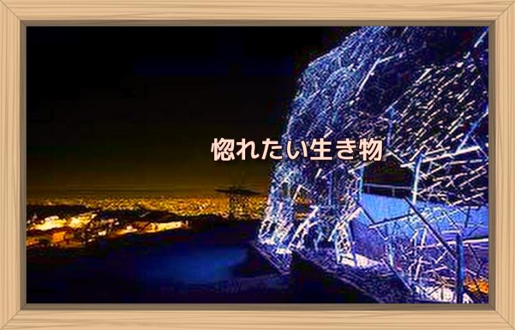 f:id:shiho196123:20191117090553j:plain