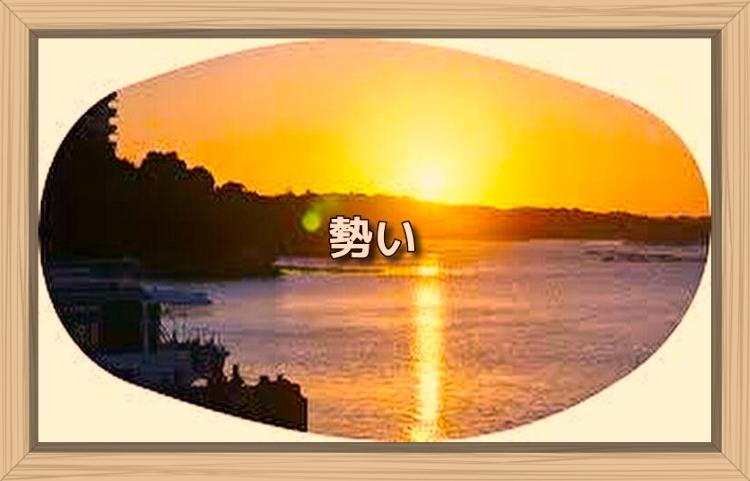 f:id:shiho196123:20191119095051j:plain