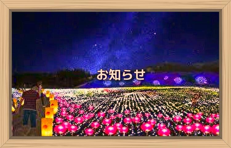 f:id:shiho196123:20191122104916j:plain
