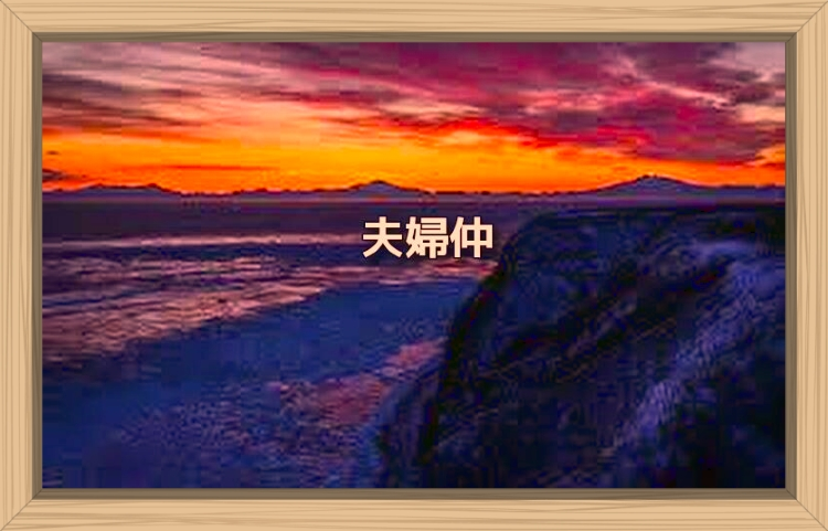 f:id:shiho196123:20191126073245j:plain