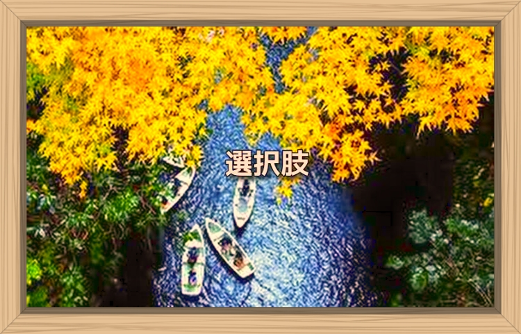 f:id:shiho196123:20191129091415j:plain