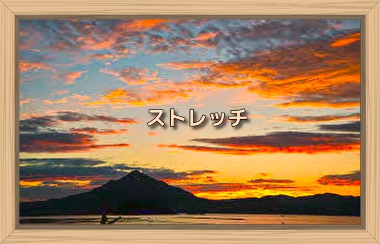 f:id:shiho196123:20191201104301j:plain