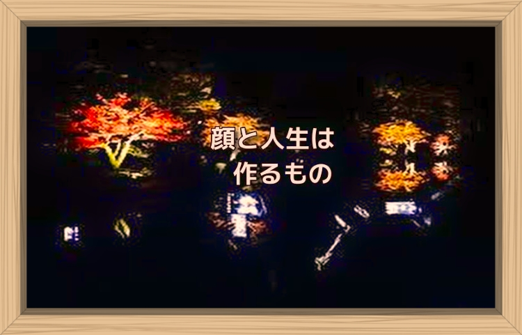 f:id:shiho196123:20191201104541j:plain