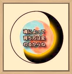 f:id:shiho196123:20200214162836j:plain