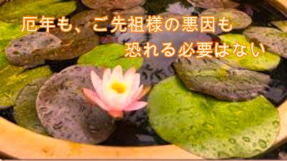 f:id:shiho196123:20210304215543p:plain