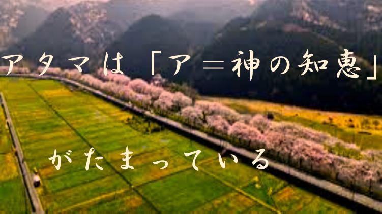 f:id:shiho196123:20210324181137p:plain