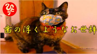 f:id:shiho196123:20210531224145p:plain