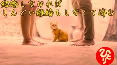 f:id:shiho196123:20210705005218p:plain