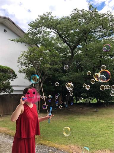 f:id:shihoko123:20190810140712j:image
