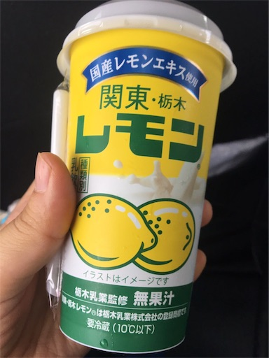 f:id:shihoko123:20190811073110j:image