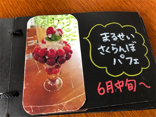 f:id:shihoko123:20190811091734j:image