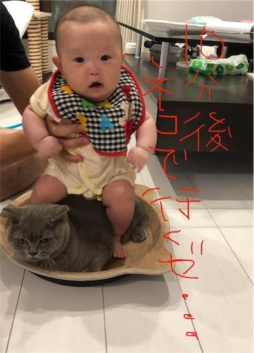 f:id:shihoko123:20190902085511j:image