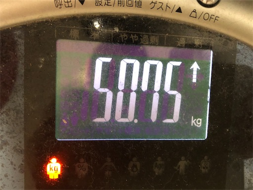 f:id:shihoko123:20200202223756j:image
