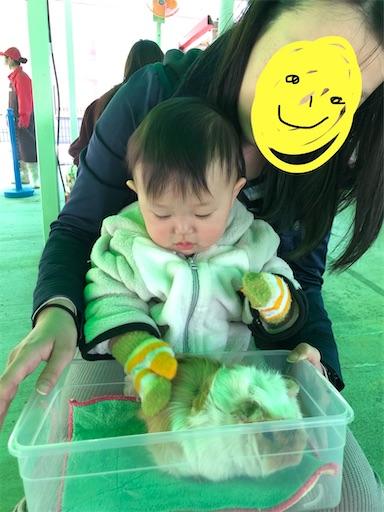 f:id:shihoko123:20200323223622j:image