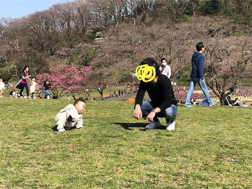 f:id:shihoko123:20200323224837j:image
